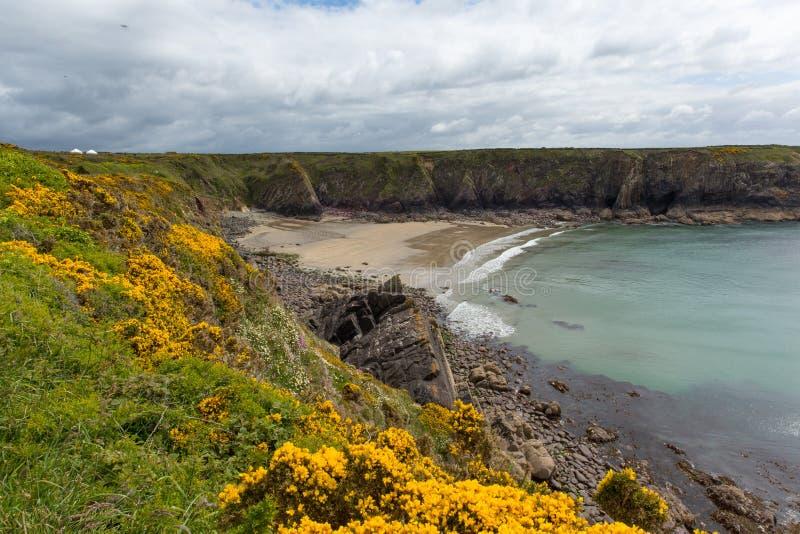 Caerfai zatoka Zachodni Walia UK fotografia stock