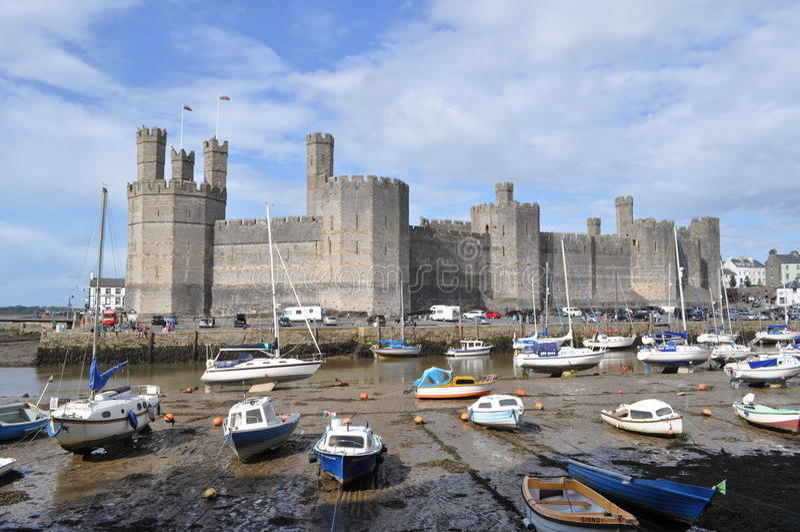Caernarfon slott, Wales royaltyfri foto