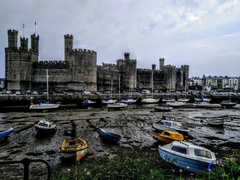 Caernarforn slott royaltyfria foton