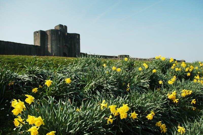 caerphilly城堡 免版税图库摄影