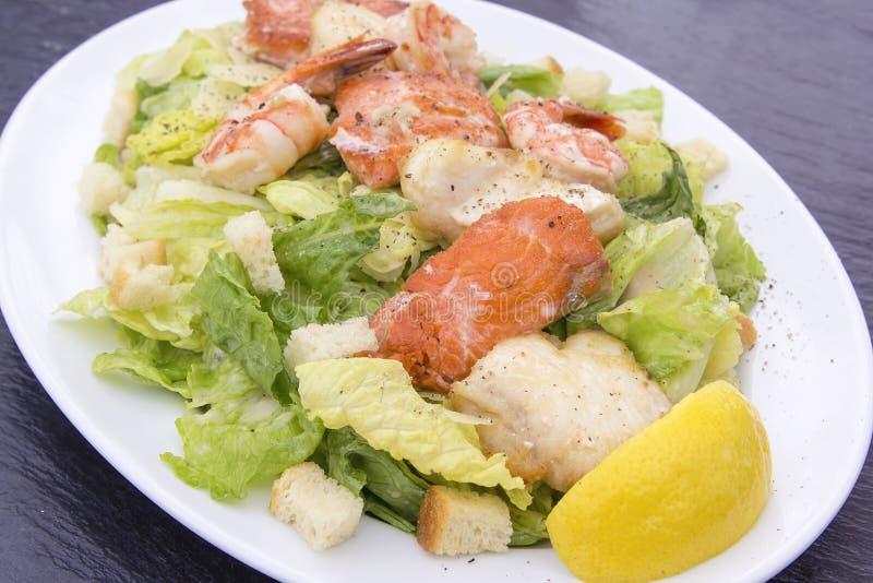 Caesar sałatka z krewetka łososiem i Białą ryba fotografia royalty free