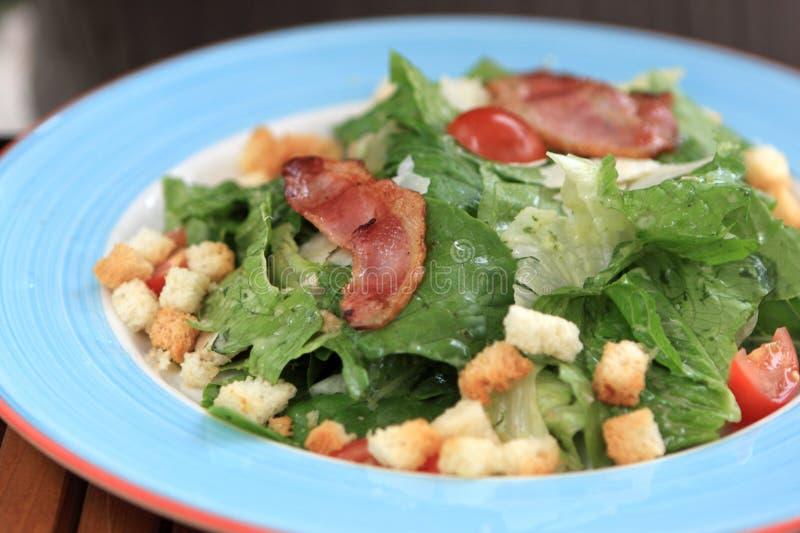 Download Caesar salad stock photo. Image of gourmet, dish, lettuce - 14599134