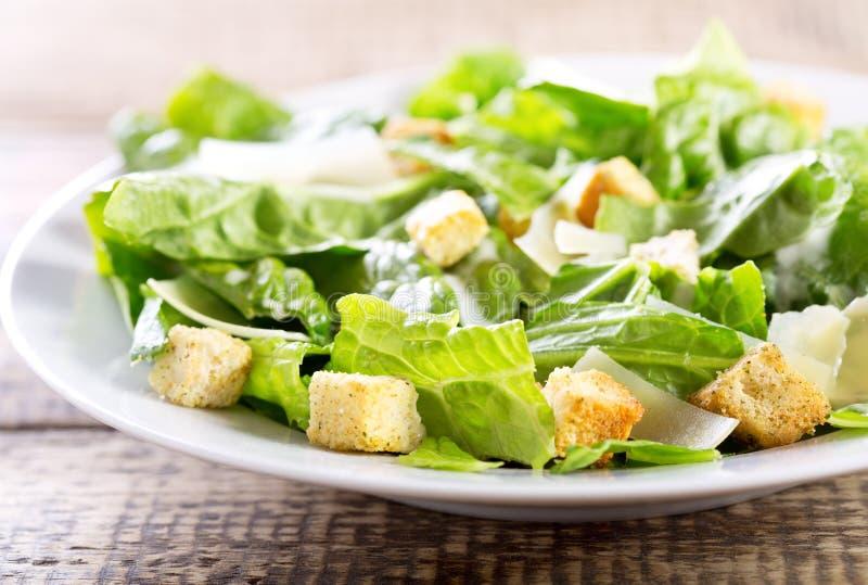 Caesar Salad fotografia de stock