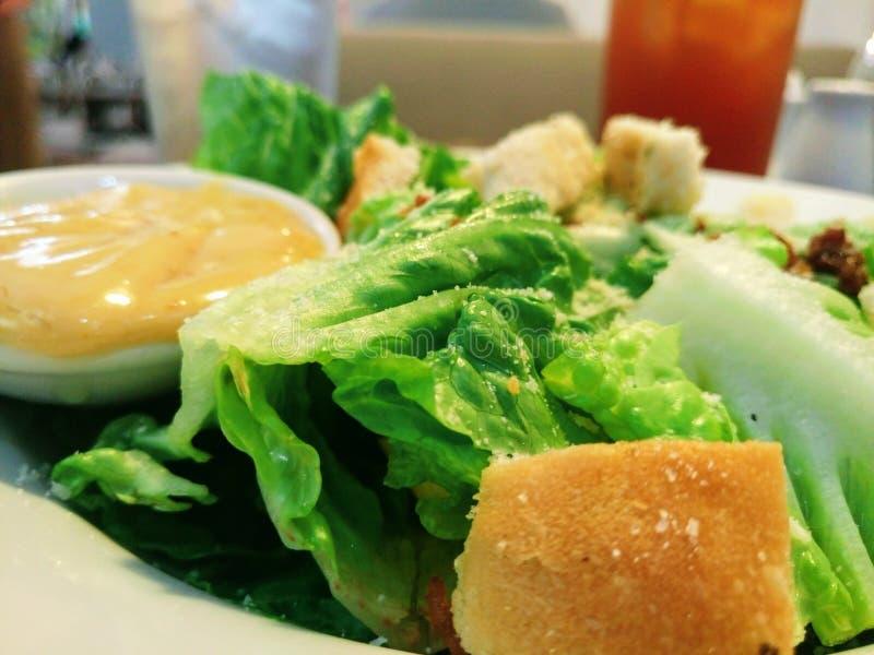 Caesar Salad photos libres de droits