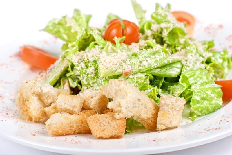Caesar salad closeup stock photos