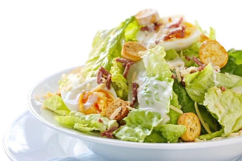 Caesar-Salat stockfotos