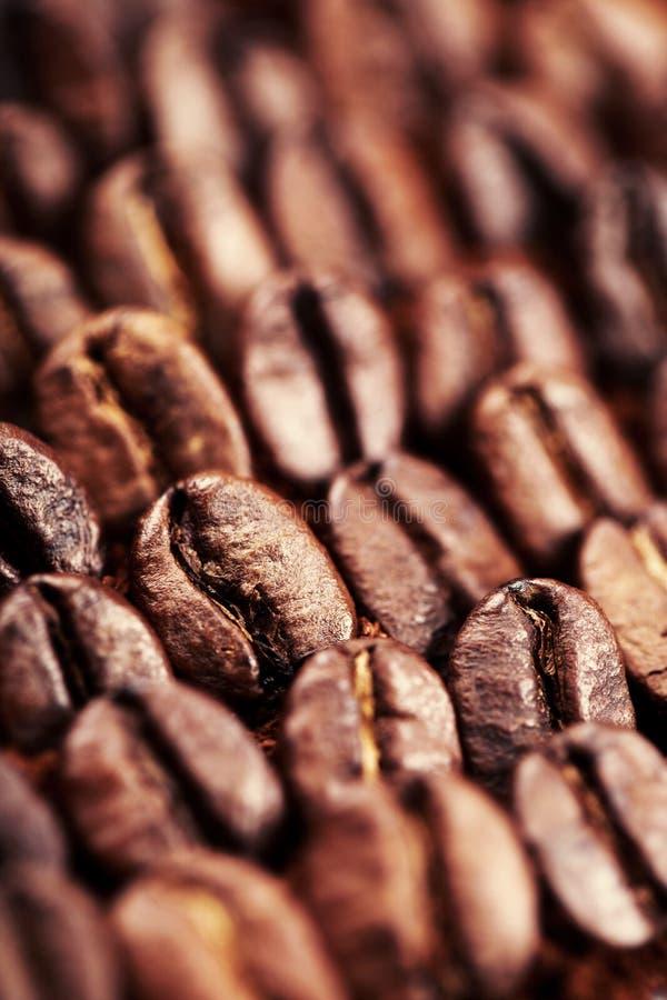 Cafè de haricot et moulu image libre de droits