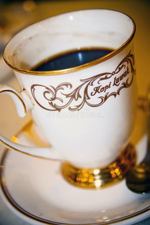 Café 02 de Luwak imagens de stock