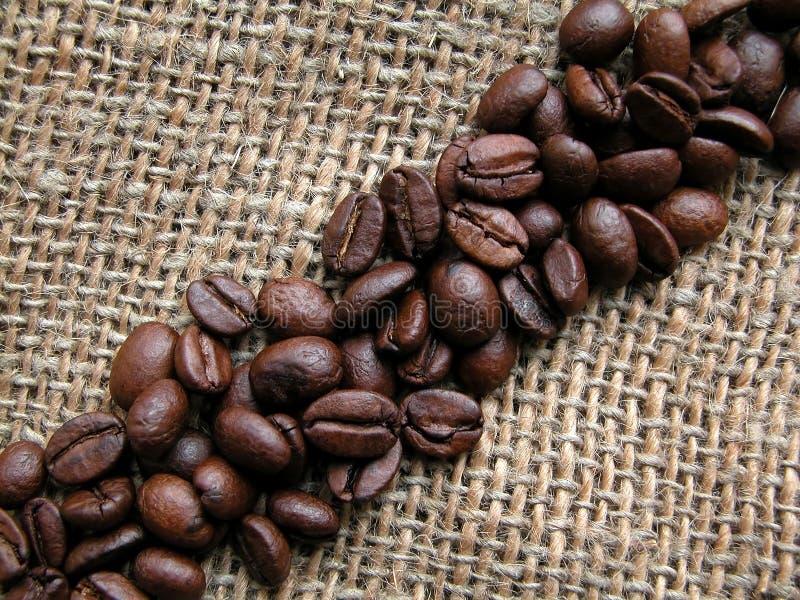 Download Café foto de stock. Imagem de roasted, feijão, café, sementes - 111558