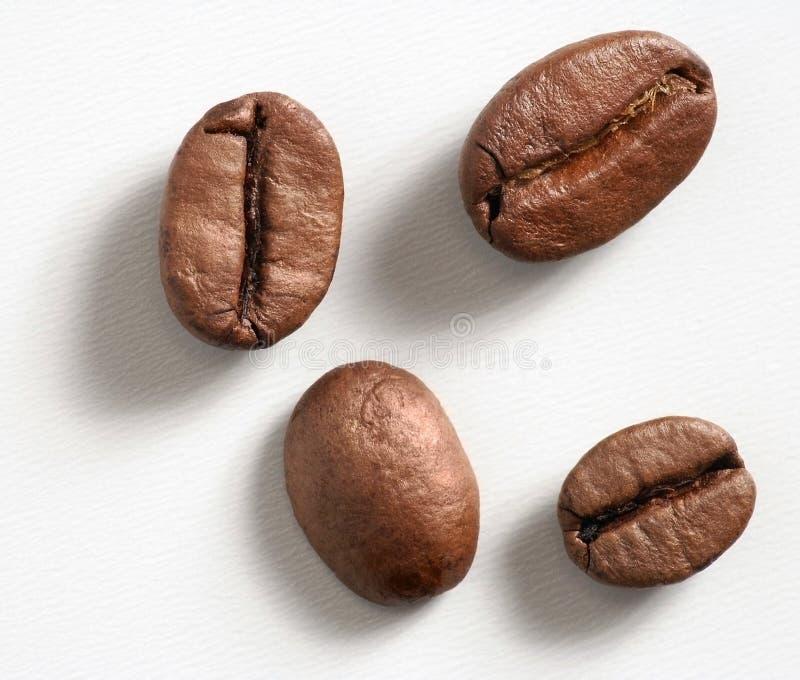 Download Café imagen de archivo. Imagen de amoladora, cosecha, espresso - 192347