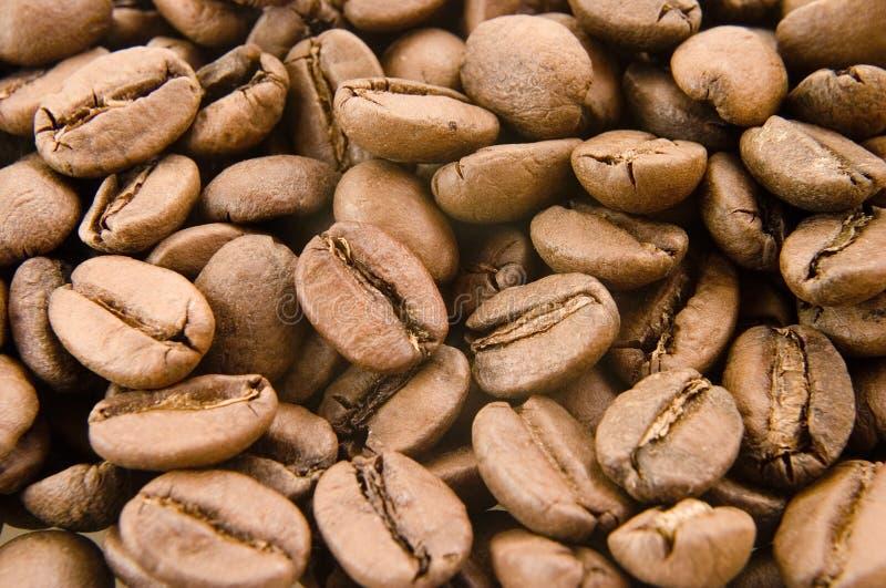 Café 5 novos foto de stock