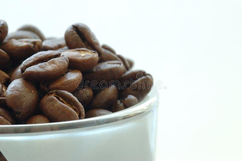 Download Café foto de stock. Imagem de espuma, rico, produto, roast - 535076
