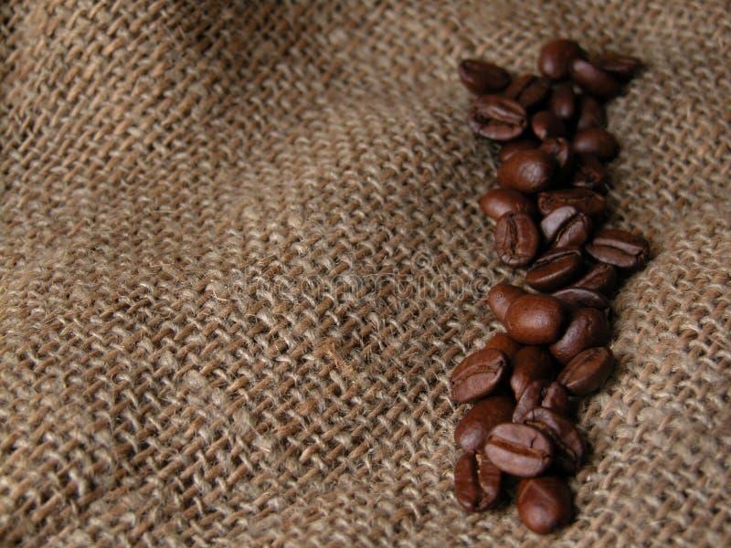 Download Café foto de stock. Imagem de bebida, alimentos, café, árabe - 59146