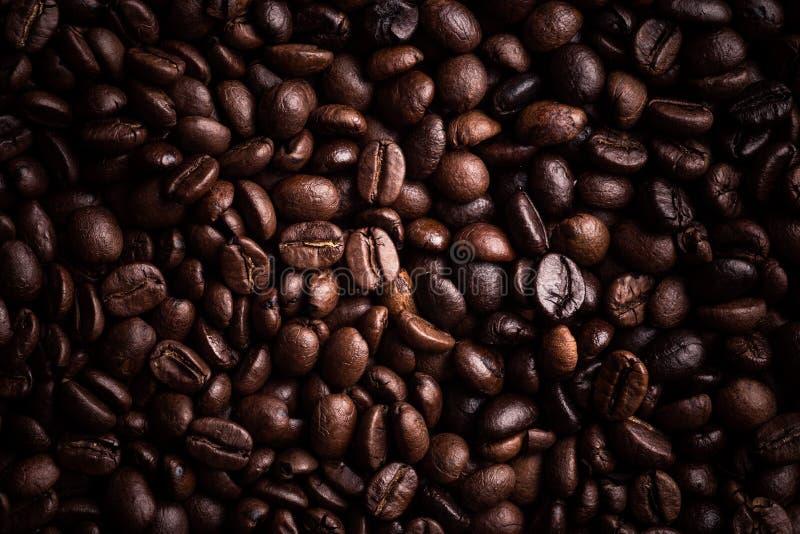 Café Bean Background photos libres de droits