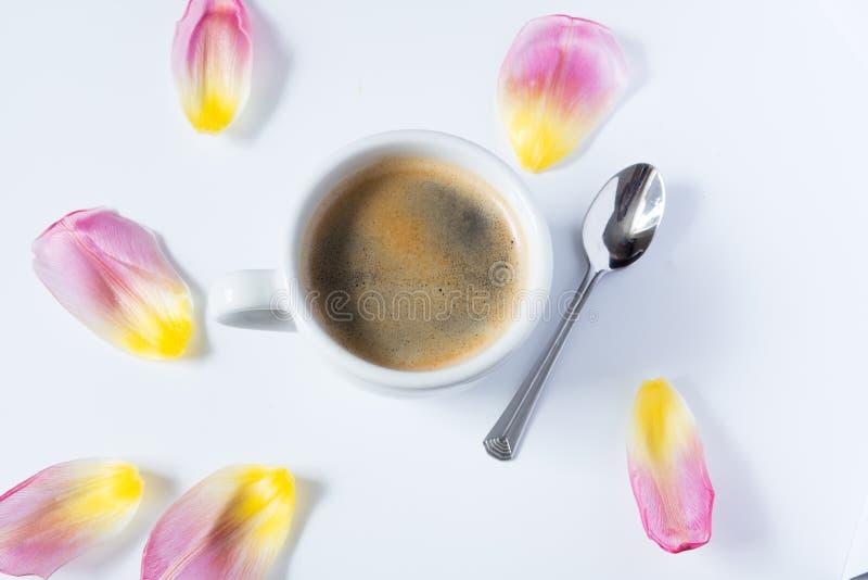 Café caliente rodeado por los pétalos del tulipán foto de archivo