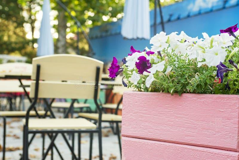 Café con las tablas y las sillas en calle Calle acogedora con las flores y las tablas de café fotos de archivo libres de regalías