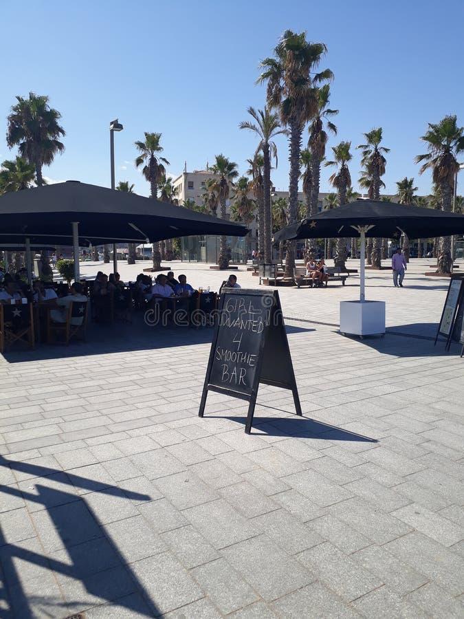 Café d'été de Girlwanted photos libres de droits