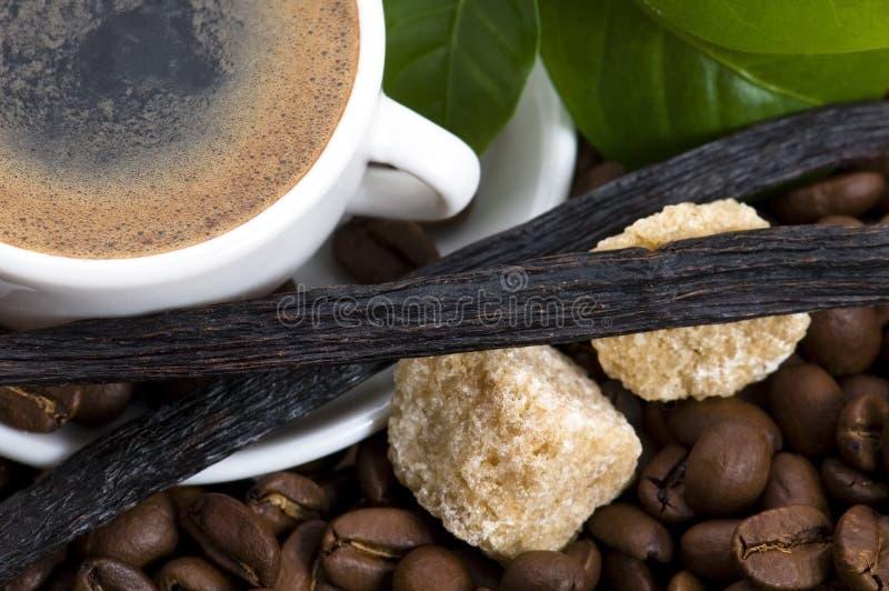 Café d'arome avec le branchement de vanille et de café photos stock