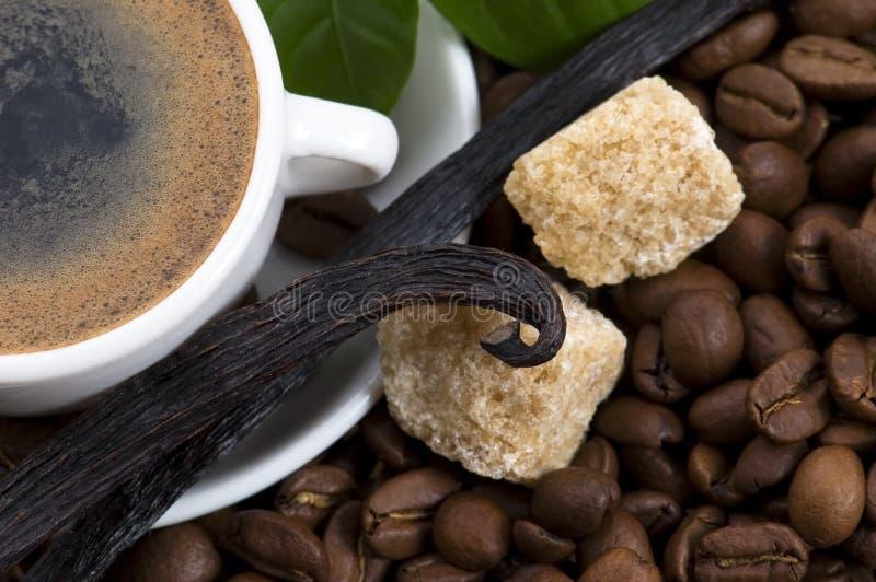 Café d'arome avec le branchement de vanille et de café photographie stock