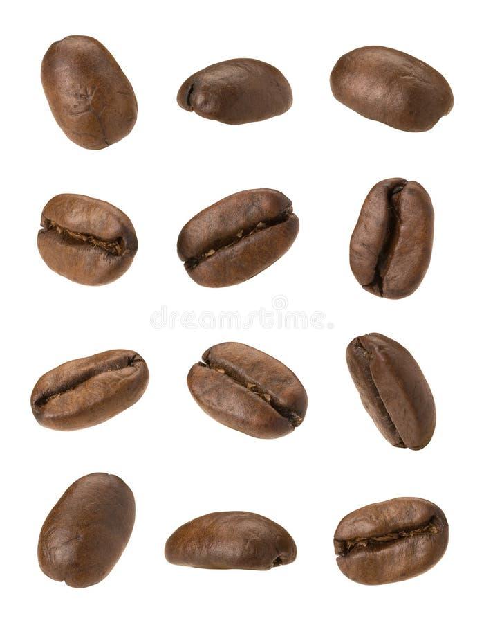 café d'haricots images stock