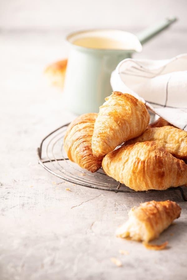 Café da manhã, croissant e tulipas da mola em claro - fundo cinzento fotos de stock royalty free