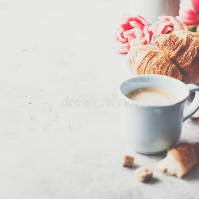 Café da manhã, croissant e tulipas da mola em claro - fundo cinzento foto de stock royalty free