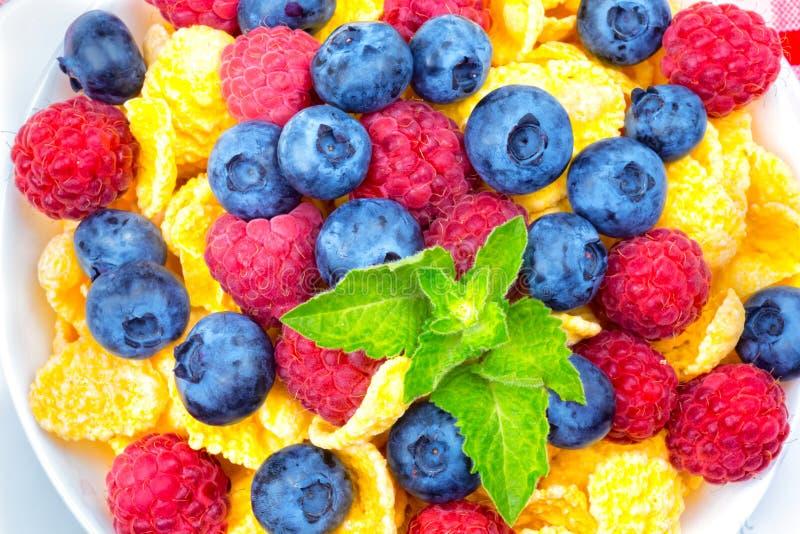 Café da manhã dos flocos de milho e das bagas, framboesas, mirtilos, foto de stock royalty free