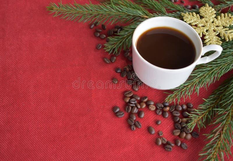 Café dans des tasses avec un brin de sapin photos libres de droits