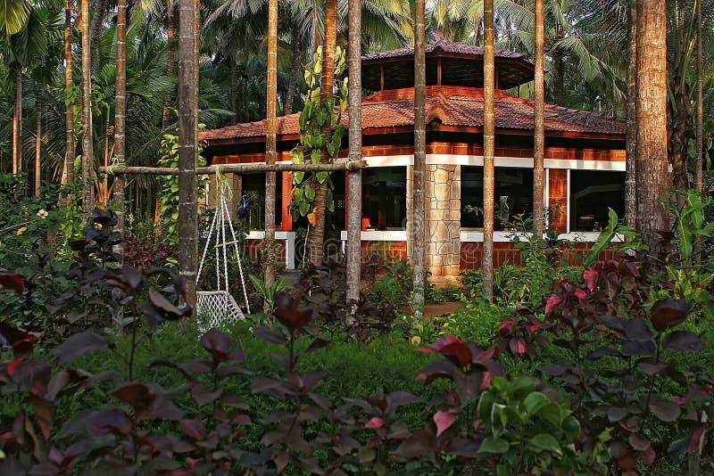 Café dans la jungle indienne image stock