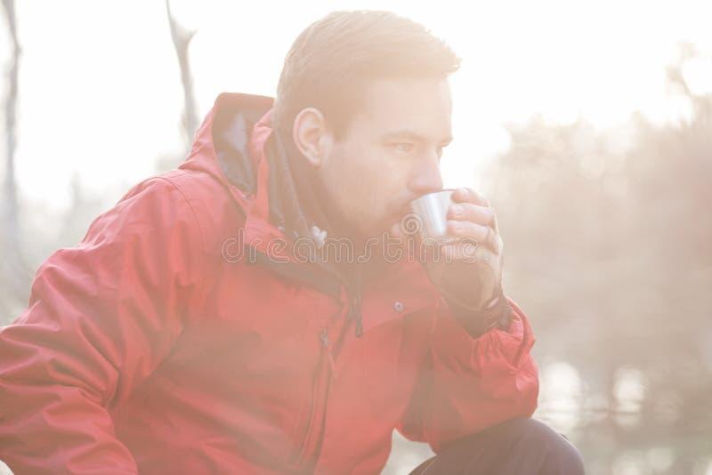 Café de consumición del caminante masculino en bosque fotos de archivo