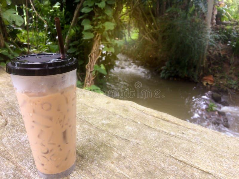 Café de gelo no jardim com córregos imagem de stock royalty free