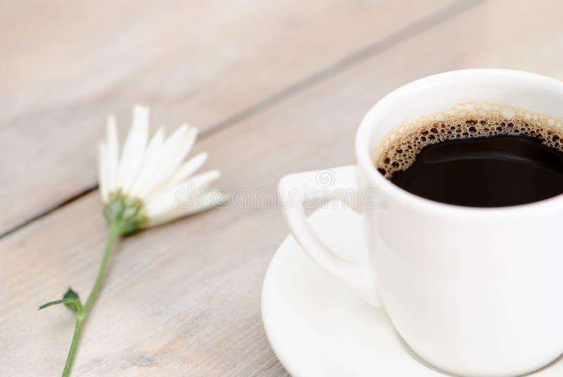 Download Café de la mañana foto de archivo. Imagen de flor, fresco - 7283110