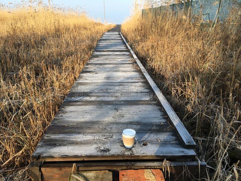 Café de la mañana en el hielo imágenes de archivo libres de regalías