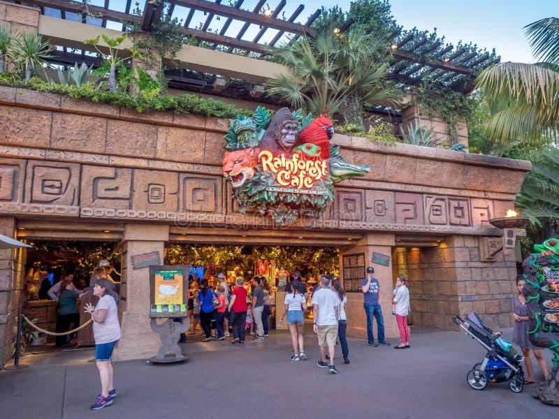 Café de la selva tropical de Disney fotografía de archivo
