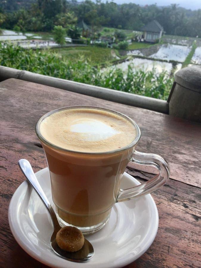 Café de Latte O verde coloca o fundo bali fotografia de stock royalty free