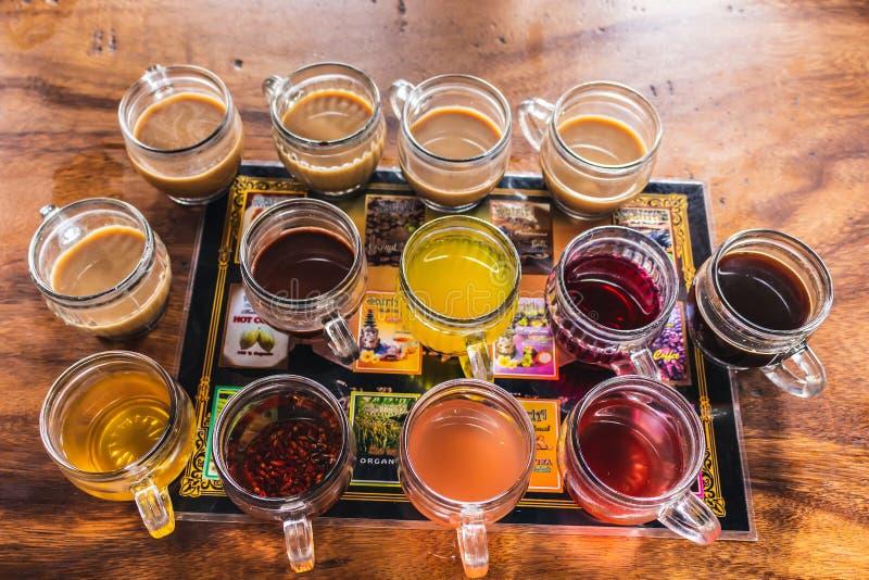 Café de Luwak, Bali fotografía de archivo libre de regalías