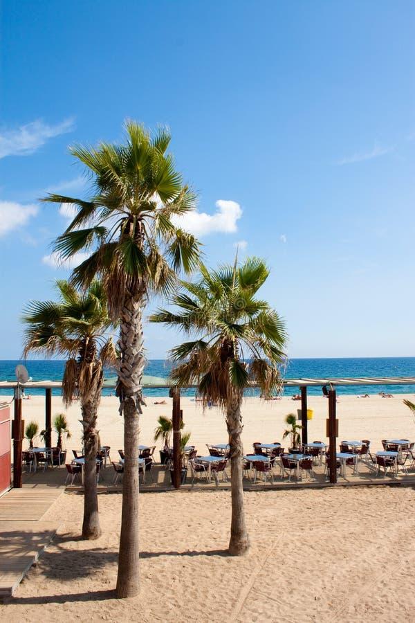 Café de plage photo stock