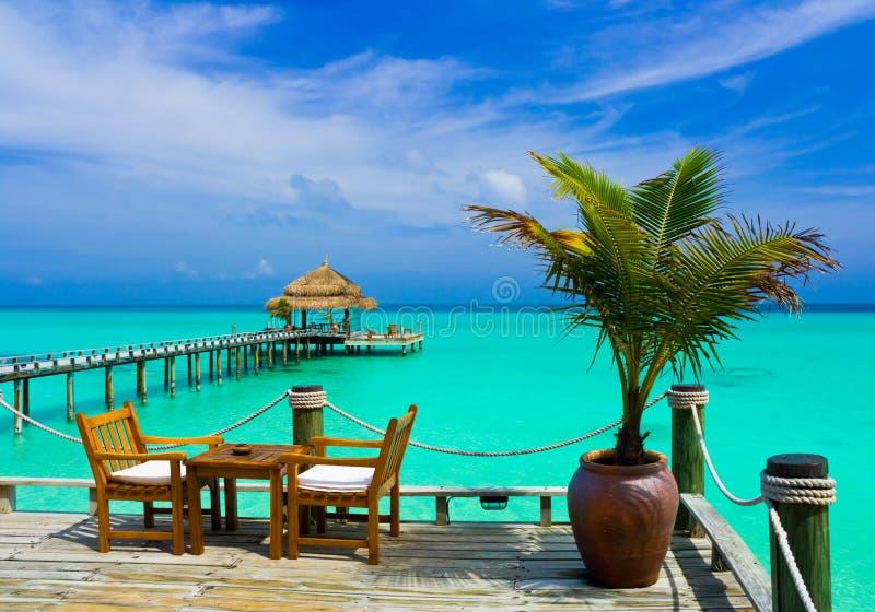 café de plage photos stock