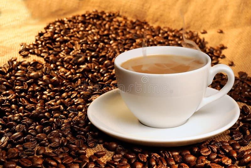 Café express blanco del café de la taza imagen de archivo