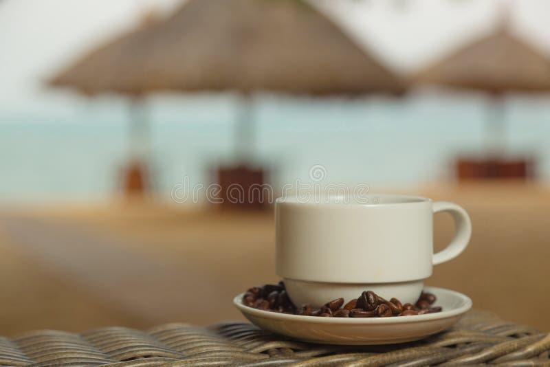 Café no fundo do mar imagens de stock