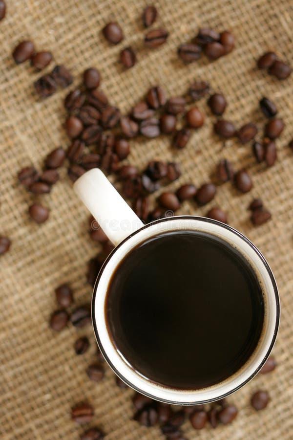 Café preto imagem de stock