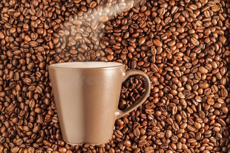 Café quente cozinhando delicioso nos feijões 1 imagens de stock royalty free