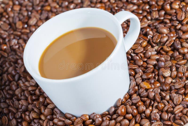 Café quente delicioso com creme nos feijões de café 2 fotografia de stock