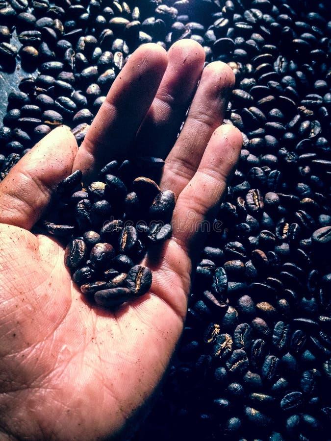 Café rôtissant le rôti foncé traditionnel photo stock