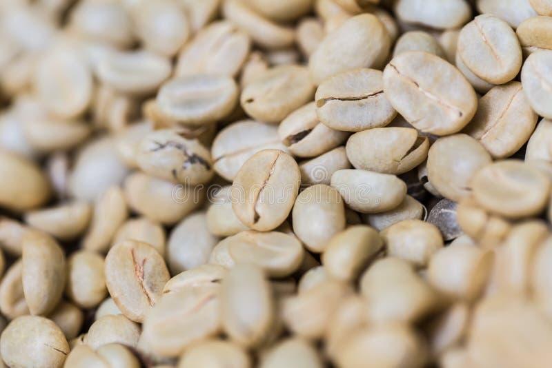 Café sin tostar o blanco del arabica fotos de archivo