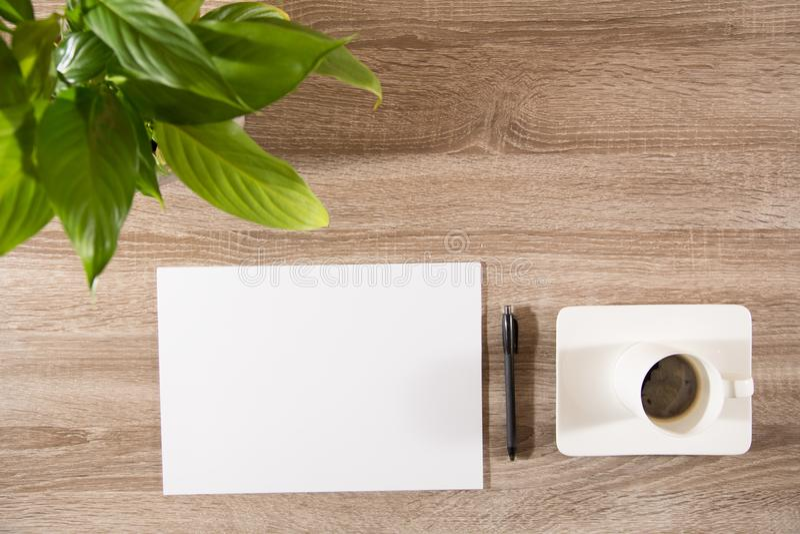 Café sur la table avec la plante verte, les grains de café et le blanc blanc p photographie stock libre de droits