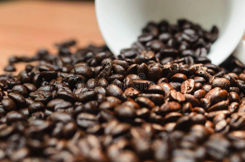 Café Taza de café por completo de granos de café fotografía de archivo libre de regalías