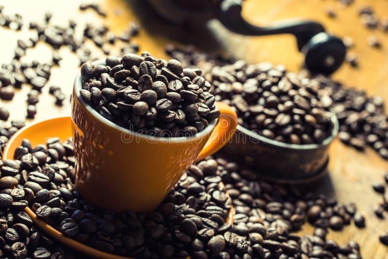 Café Taza de café por completo de los granos de café, amoladora de café en el fondo imagenes de archivo