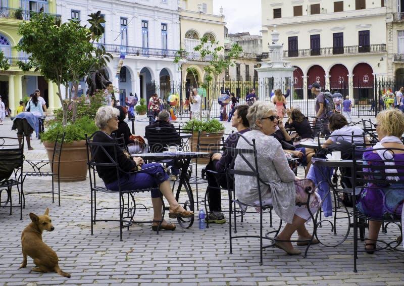 Café, vieille La Havane, Cuba images libres de droits