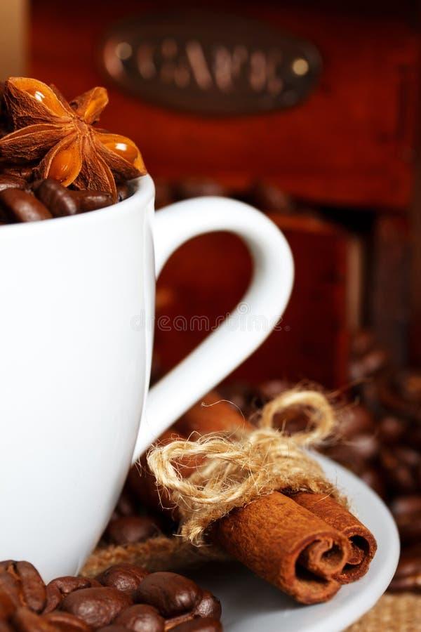 Café y especias fotos de archivo libres de regalías